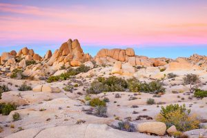 joshua tree national park califnornia desert rv camping