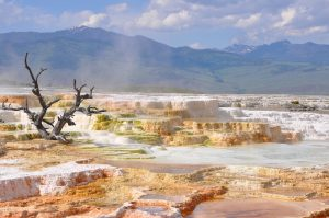 yellowstone thermal hot springs national park rv trip