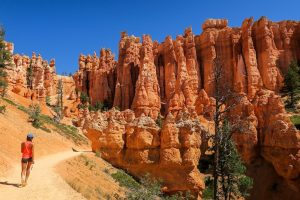 Bryce canyon utah national park largest collection of hoodoos national park camping hiking